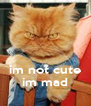 im not cute im mad - Personalised Poster A4 size