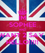 IM SOPHEE AND I WANT 2 SAY ... HELLO!!!!! - Personalised Poster A4 size