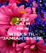 KEEP CALM 8 MORE WEEKS TIL  JAMIAH IS HERE - Personalised Poster A4 size