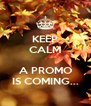 KEEP CALM  A PROMO IS COMING... - Personalised Poster A4 size