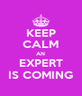 KEEP CALM AN EXPERT IS COMING - Personalised Poster A4 size