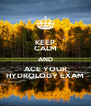 KEEP CALM AND ACE YOUR HYDROLOGY EXAM - Personalised Poster A4 size