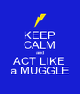 KEEP CALM and ACT LIKE a MUGGLE - Personalised Poster A4 size