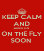 KEEP CALM AND ADINTON  ON THE FLY SOON  - Personalised Poster A4 size
