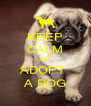 KEEP CALM AND ADOPT  A DOG - Personalised Poster A4 size