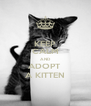 KEEP CALM AND ADOPT  A KITTEN - Personalised Poster A4 size