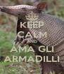 KEEP CALM AND AMA GLI ARMADILLI - Personalised Poster A4 size