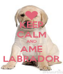 KEEP CALM AND AME LABRADOR - Personalised Poster A4 size