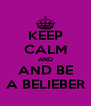 KEEP CALM AND AND BE A BELIEBER - Personalised Poster A4 size