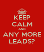 KEEP CALM AND ANY MORE LEADS? - Personalised Poster A4 size