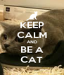 KEEP CALM AND BE A CAT - Personalised Poster A4 size