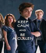 KEEP CALM AND BE A CULLEN - Personalised Poster A4 size