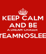 KEEP CALM AND BE A DREAM CHASER  #TEAMNOSLEEP   - Personalised Poster A4 size