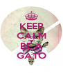 KEEP CALM AND BE A GATO - Personalised Poster A4 size