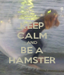 KEEP CALM AND BE A HAMSTER - Personalised Poster A4 size
