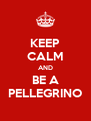 KEEP CALM AND BE A PELLEGRINO - Personalised Poster A4 size