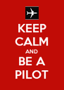 KEEP CALM AND BE A PILOT - Personalised Poster A4 size