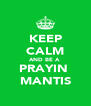 KEEP CALM AND BE A  PRAYIN  MANTIS - Personalised Poster A4 size