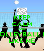 KEEP CALM AND BE A VOLLEYBALL LOVER  LIKE ME - Personalised Poster A4 size