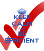 KEEP CALM AND BE EFFICIENT - Personalised Poster A4 size