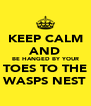 KEEP CALM AND BE HANGED BY YOUR TOES TO THE WASPS NEST - Personalised Poster A4 size