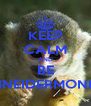 KEEP CALM AND BE SCHNEIDERMONKEY - Personalised Poster A4 size