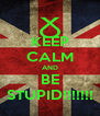 KEEP CALM AND BE STUPID!!!!!!! - Personalised Poster A4 size