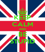 KEEP CALM AND BE STUPID - Personalised Poster A4 size