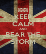 KEEP CALM AND BEAR THE STORM - Personalised Poster A4 size