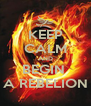 KEEP CALM AND BEGIN  A REBELION - Personalised Poster A4 size