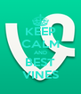 KEEP CALM AND BEST VINES - Personalised Poster A4 size