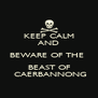 KEEP CALM AND BEWARE OF THE  BEAST OF  CAERBANNONG - Personalised Poster A4 size