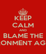 KEEP CALM AND BLAME THE ENVIRONMENT AGENCY - Personalised Poster A4 size