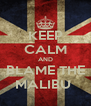 KEEP CALM AND BLAME THE MALIBU  - Personalised Poster A4 size