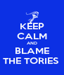 KEEP CALM AND BLAME THE TORIES  - Personalised Poster A4 size