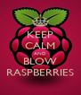 KEEP CALM AND BLOW RASPBERRIES - Personalised Poster A4 size