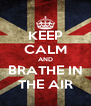 KEEP CALM AND BRATHE IN THE AIR - Personalised Poster A4 size