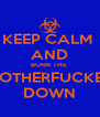KEEP CALM  AND BURN THE  MOTHERFUCKER DOWN - Personalised Poster A4 size