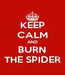 KEEP CALM AND BURN THE SPIDER - Personalised Poster A4 size