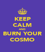 KEEP CALM AND BURN YOUR COSMO - Personalised Poster A4 size