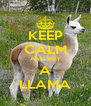KEEP CALM AND BUY A LLAMA - Personalised Poster A4 size