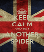 KEEP CALM AND BUY ANOTHER SPIDER - Personalised Poster A4 size