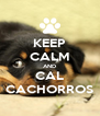 KEEP CALM AND CAL CACHORROS - Personalised Poster A4 size