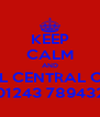 KEEP CALM AND CALL CENTRAL CARS 01243 789432 - Personalised Poster A4 size