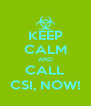 KEEP CALM AND CALL CSI, NOW! - Personalised Poster A4 size