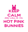 KEEP CALM AND CALL IN THE  HOT PINK BUNNIES - Personalised Poster A4 size