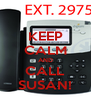 KEEP CALM AND CALL SUSAN! - Personalised Poster A4 size