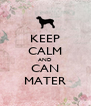 KEEP CALM AND CAN MATER - Personalised Poster A4 size