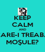 KEEP CALM AND CARE-I TREABA MOŞULE? - Personalised Poster A4 size