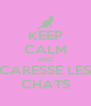 KEEP CALM AND CARESSE LES CHATS - Personalised Poster A4 size